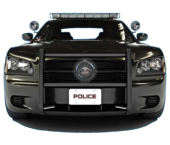 Dotworkz BASH on Police Car for Arecont AV8365 or AV8185 Compatible Cameras by Dotworkz Outdoor Camera Enclosures